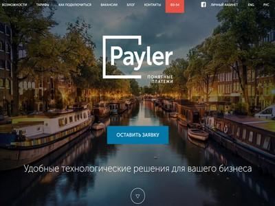 Payler отзывы, обзор, аналоги