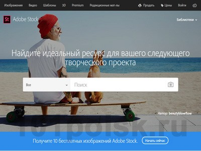 фото Adobe Stock